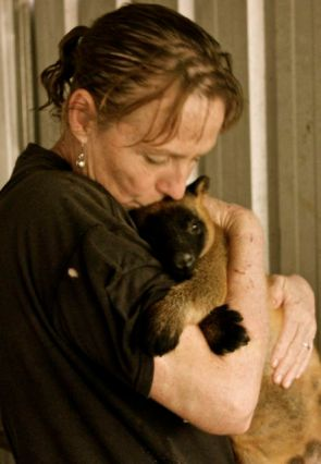 Karen is greeted each morning by a different little personality. This is Scotty, he just wanted to hug and not let go.