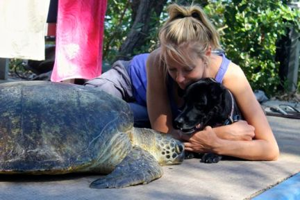 My little turtle helper in training