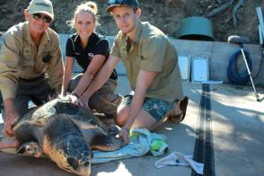 Amanda has her satellite tracker attached ready for release.