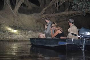 Spotlighting in Cape York with Bob Irwin.