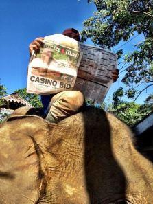 News hits the Sumatran jungle!