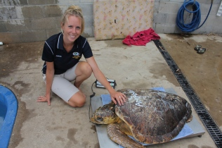 Amanda, a shark attack victim in care at QITRC.