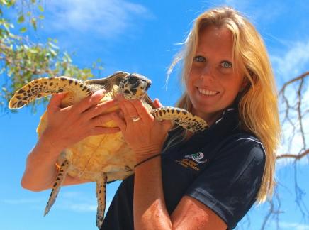 Hawksbill turtle on Quoin Island.