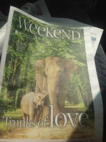 Bona, Feature Edition Sunshine Coast Daily