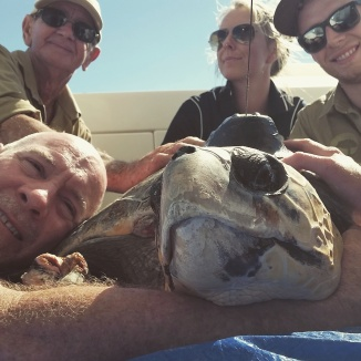 Saying farewell to Amanda the loggerhead.