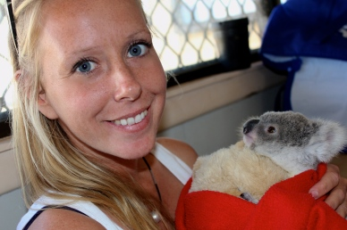 Cuddles with Greg, a baby koala in care with AACE.