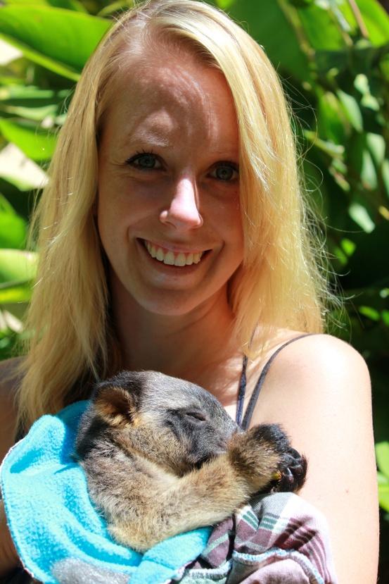Kimberley, a baby Lumholtz Tree Kangaroo having a nap.