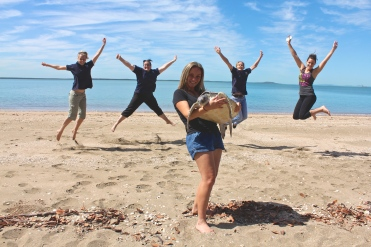 Sea turtle release with volunteers at the Quoin Island Turtle Rehabilitation Centre.