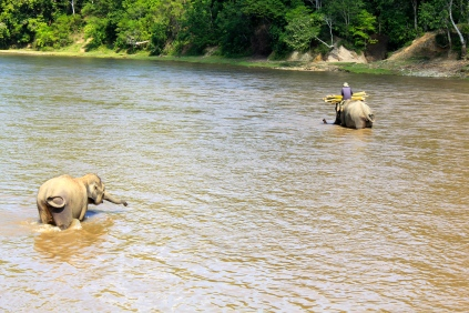 Bona heading back across the river with Aswita